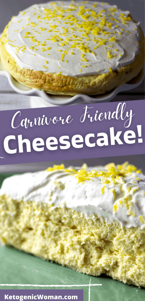 carnivore cheesecake collage pinterest pin
